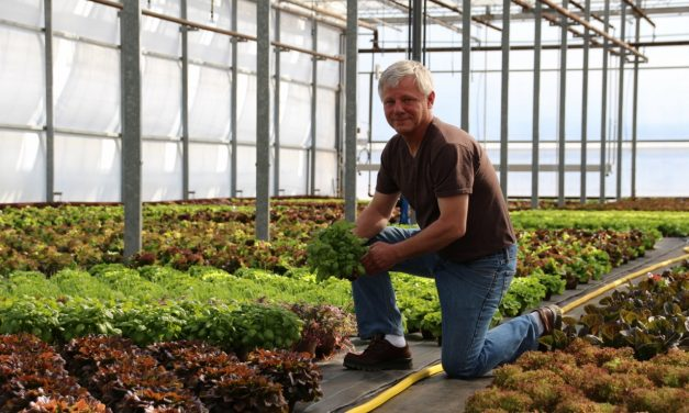 Microgreens mean macro success for Greenbelt