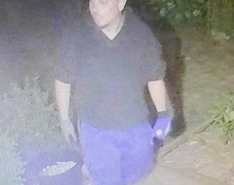 Suspect sought in residential break and enter investigation