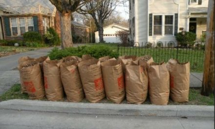 One more chance to put out yard waste