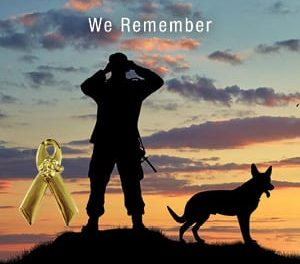 Ontario SPCA honours animals' wartime contributions