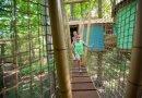 Treetop Trekking wins international award from attractions industry