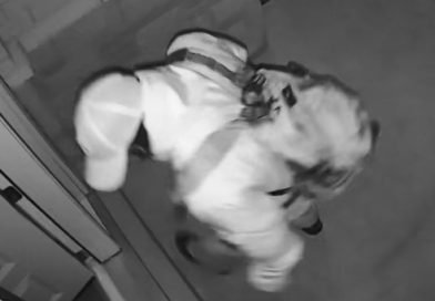Suspect sought following an armed break and enter